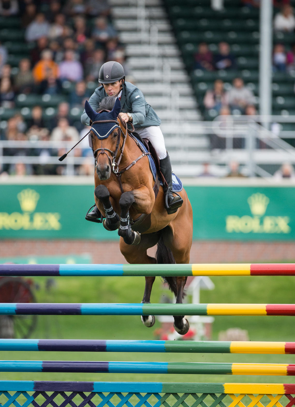 Horse jumping over a competition fence